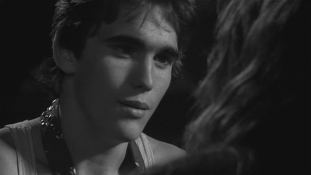 "Matt Dillon dans ""Rusty James"""