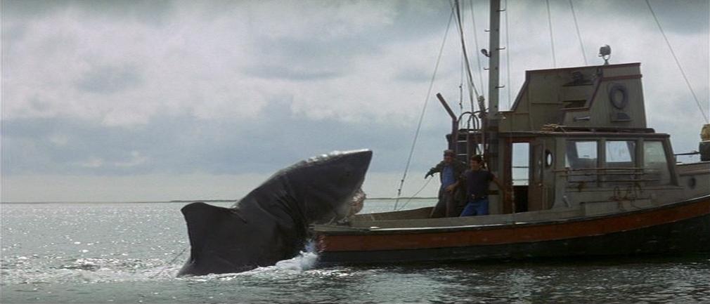 requin-dents-de-la-mer
