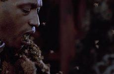 L'horreur urbaine en quatre films