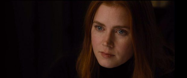 "Amy Adams dans ""Nocturnal Animals"""